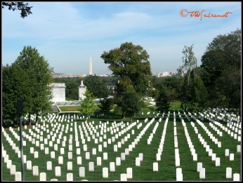View of Washington Monument from Arlington Cemetery